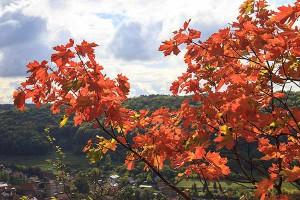 Herbstlaub in Thüringen