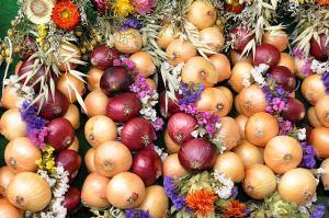 Zwiebelzopf auf Zwiebelmarkt Apolda