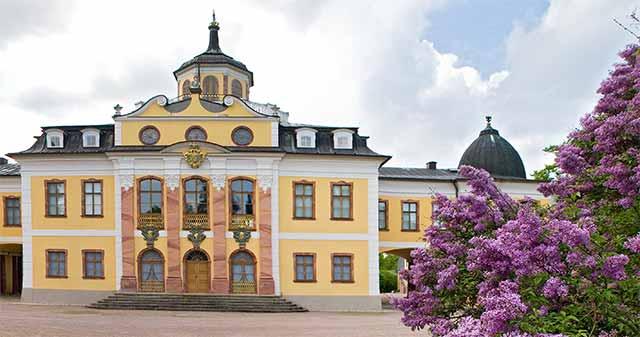 Flieder auf Schloss Belvedere Weimar