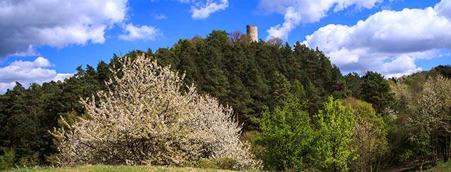 Der Bergfried der Ruine Brandenburg