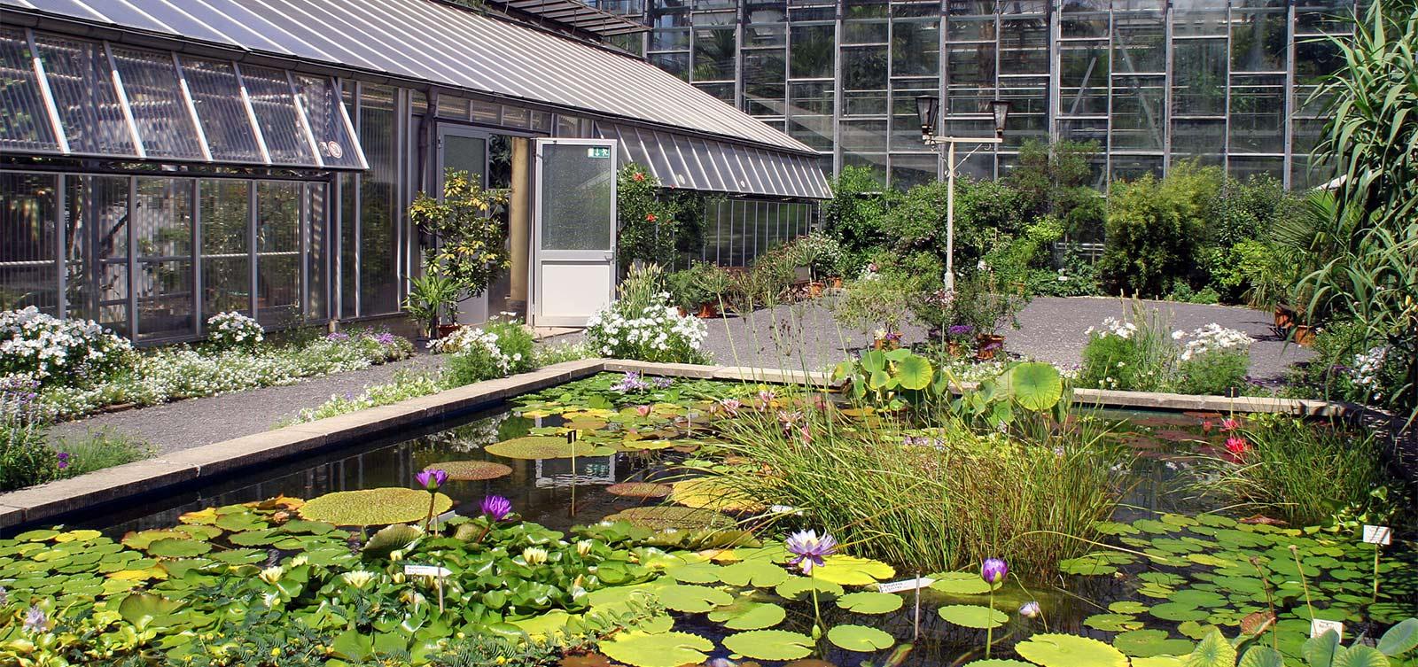 Botanischer Garten Jena