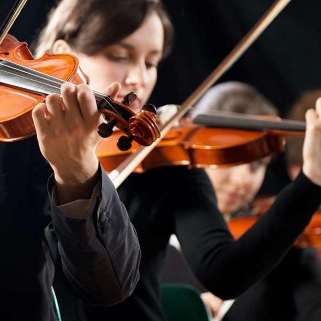 Bach-Festival-Sommerkonzert Thüringer Bach Collegium