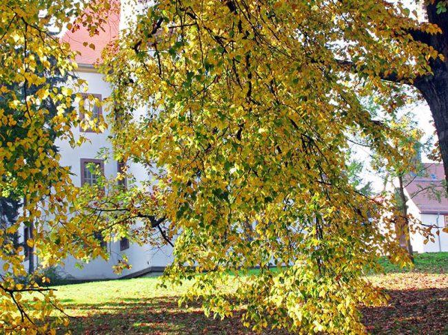 Schloss Christiansburg