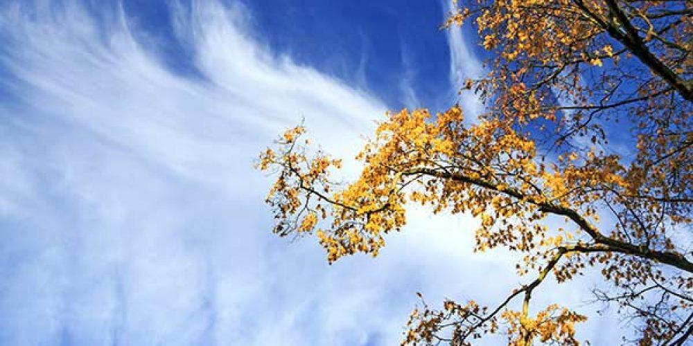 Herbst in Thüringen